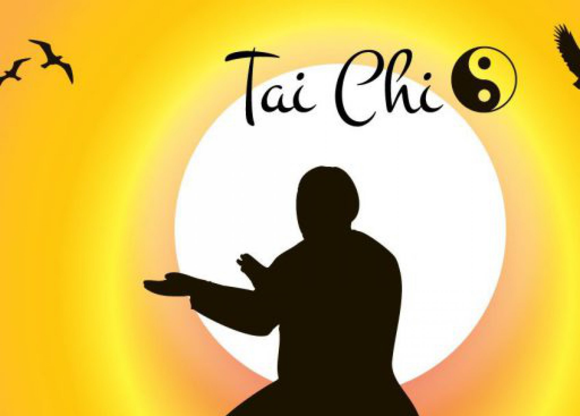 Célèbre True Tai Chi Chuan – Authentic Yang Family Tai Chi Chuan  FK88